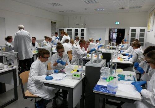 Oldenburger LehrerInnen experimentieren 2018 im HLS-Labor