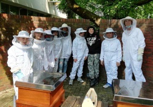 Die Imker-AG hat nun endlich Bienen!