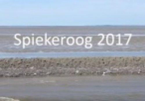 Projektfahrt nach Spiekeroog